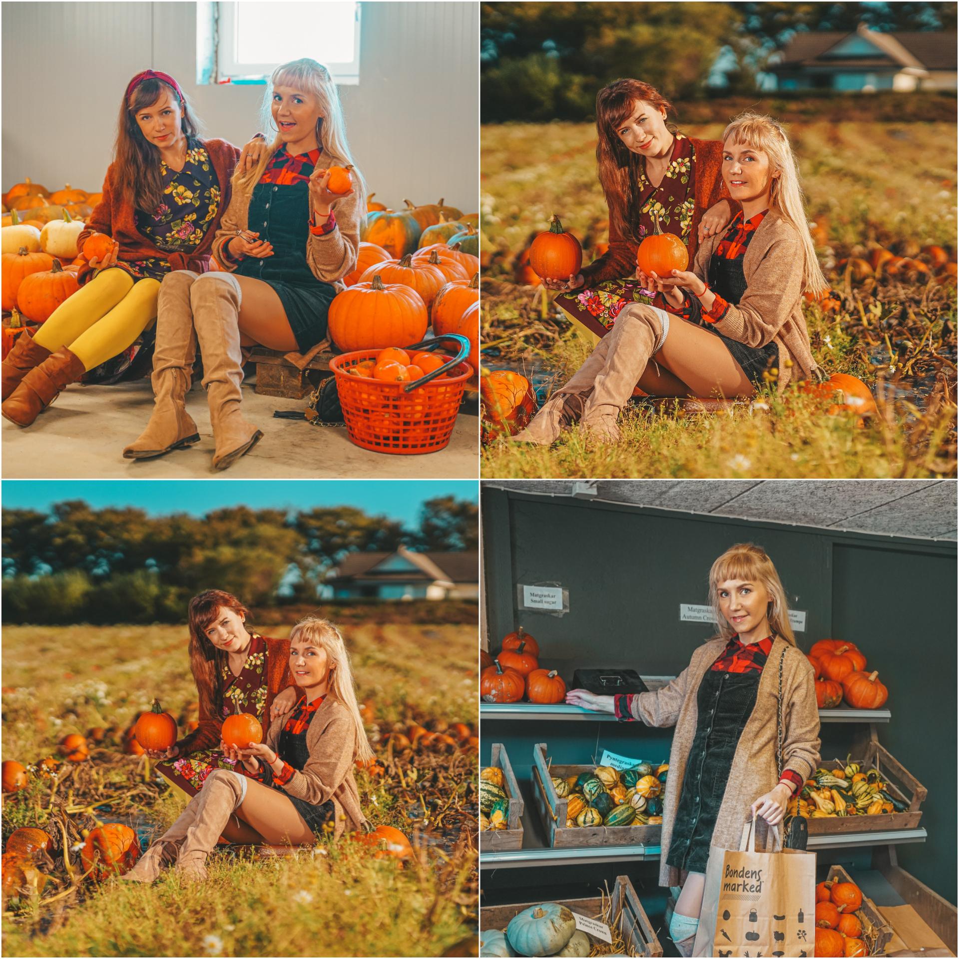collage høsten
