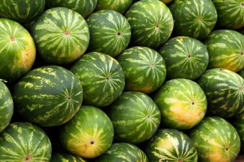 vaske melon bakterier frukt