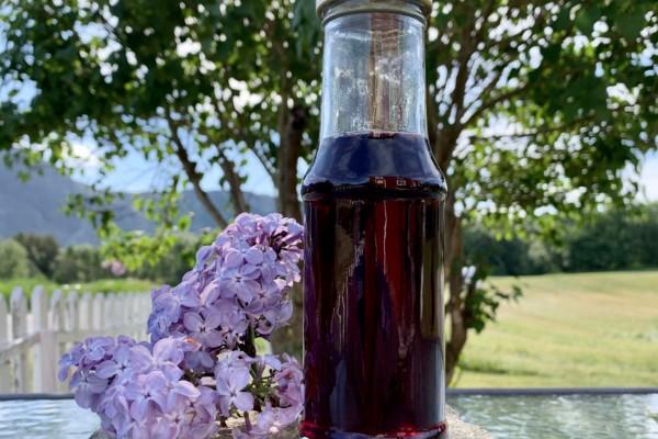 Syren- og blåbærsirup – du søte blomstrende sommertid