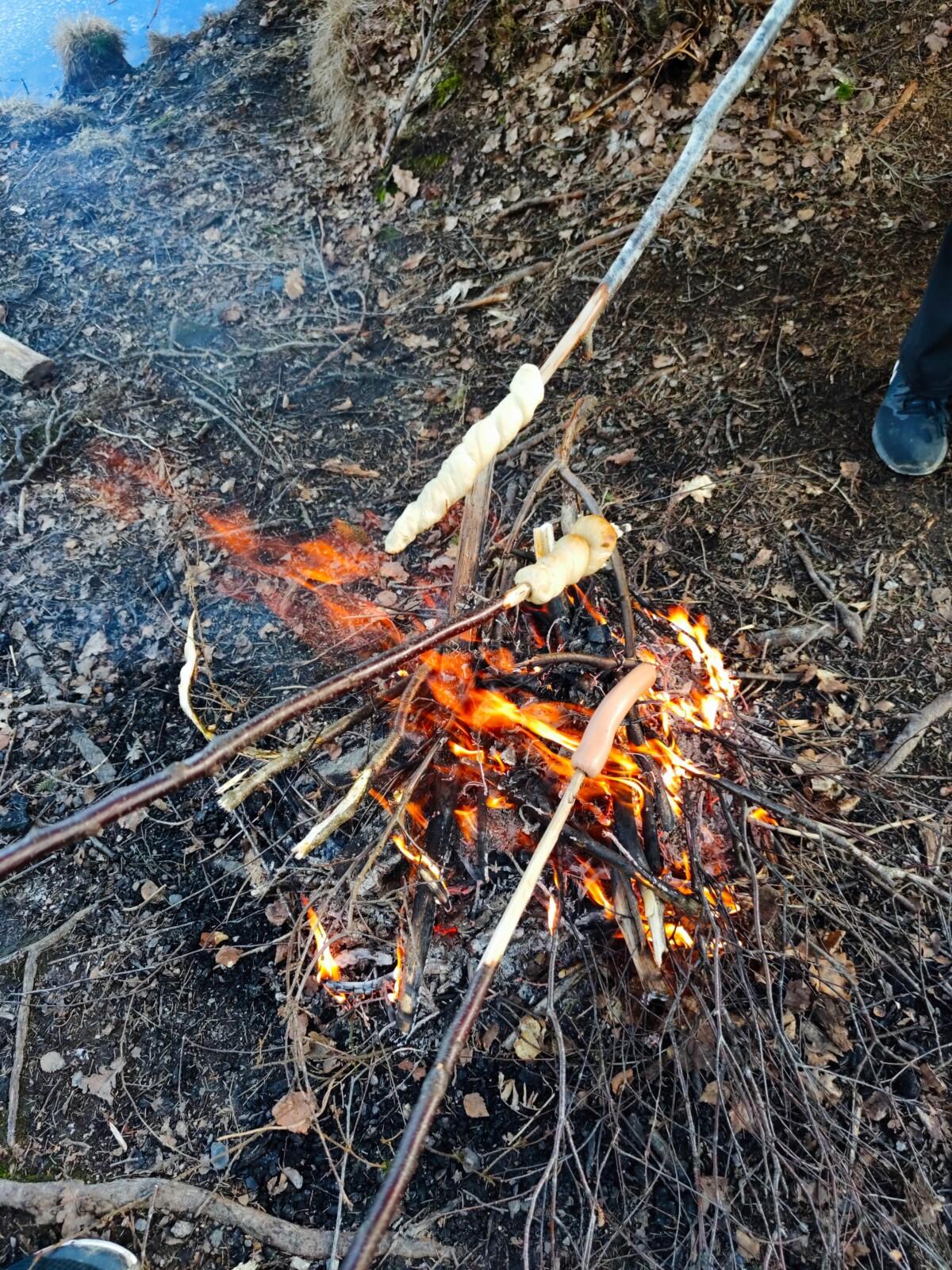 isalicious-isalicious1-blogger-blogg-blog-blogging-natur-norge-orientering-grill-bål-skog-norsknatur-pølser-pinnebrød-grilling-skog-isalicious.blogg