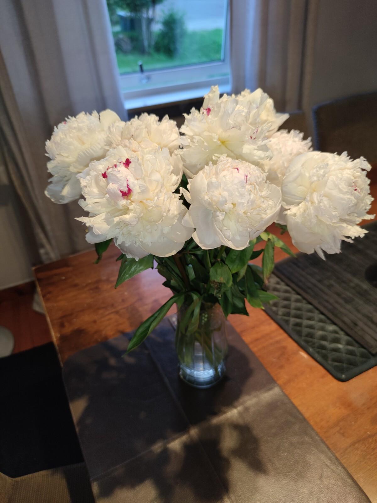 blomster-gave-isalicious-isalicious1-isalicious.blogg.no-ukensbilde-bloggno-blogg-blogger-taco-tacofredag-mat-middag-natur-slush-