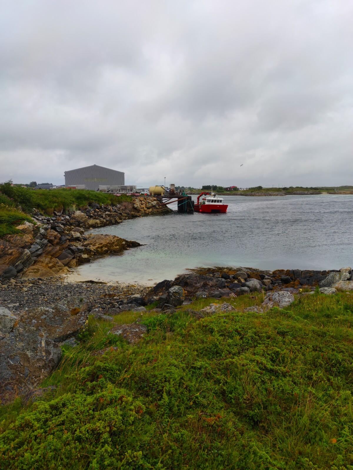 bildedryss-bilder-nordnorge-nord-norge-seløy-seløya-helgeland-herøy-sandnessjøen-mosjøen-natur-norge-norway-northofnorway-trondheim-vakkernatur-isalicious-klartvann-strang-norgesommer-norgessommer-sommer-helgelandskysten-isalicious.blogg.no-natur-fjell-strand-sjø-hav-fiske-fisketur-skolo-middag-mat-pizza-laksepizza-