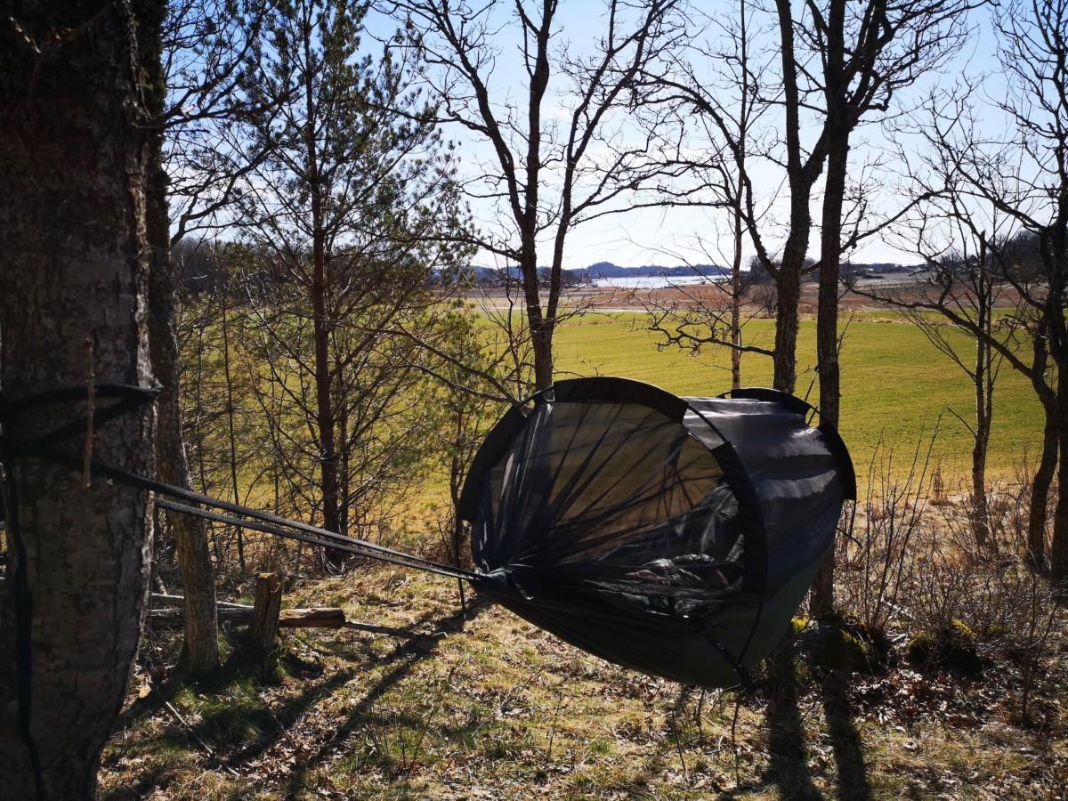Pappahjerte – Magiske dager i skogen