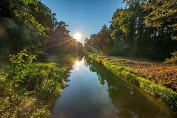 Bory Tucholskie Nasjonalpark – storfuglens gamle kongerike