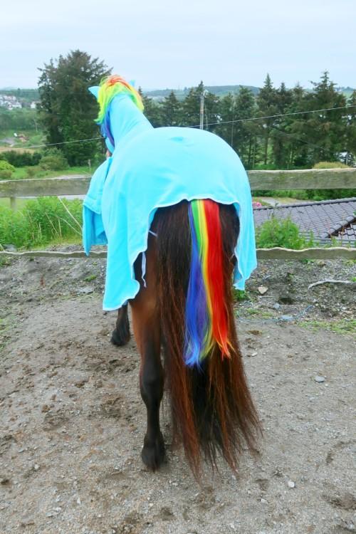 Enhjørning hest