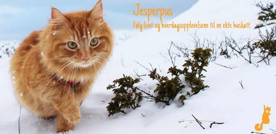 Blogg – Side 5 – Jesperpus
