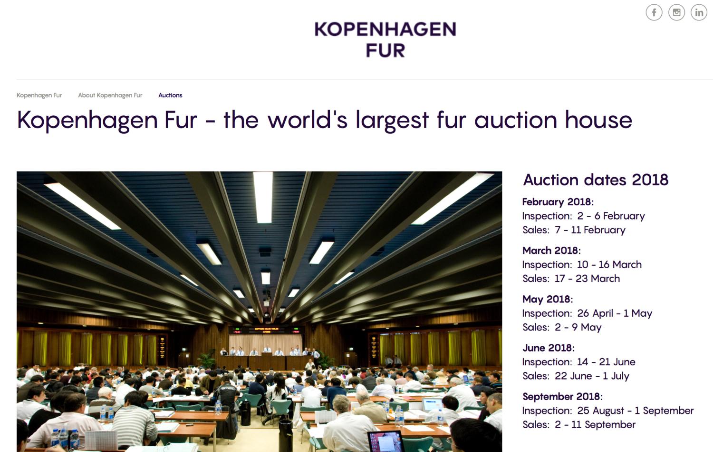 bcffe0b58b21 Vil etterspørselen på verdensmarkedet bli mindre om vi avvikler norsk  oppdrett