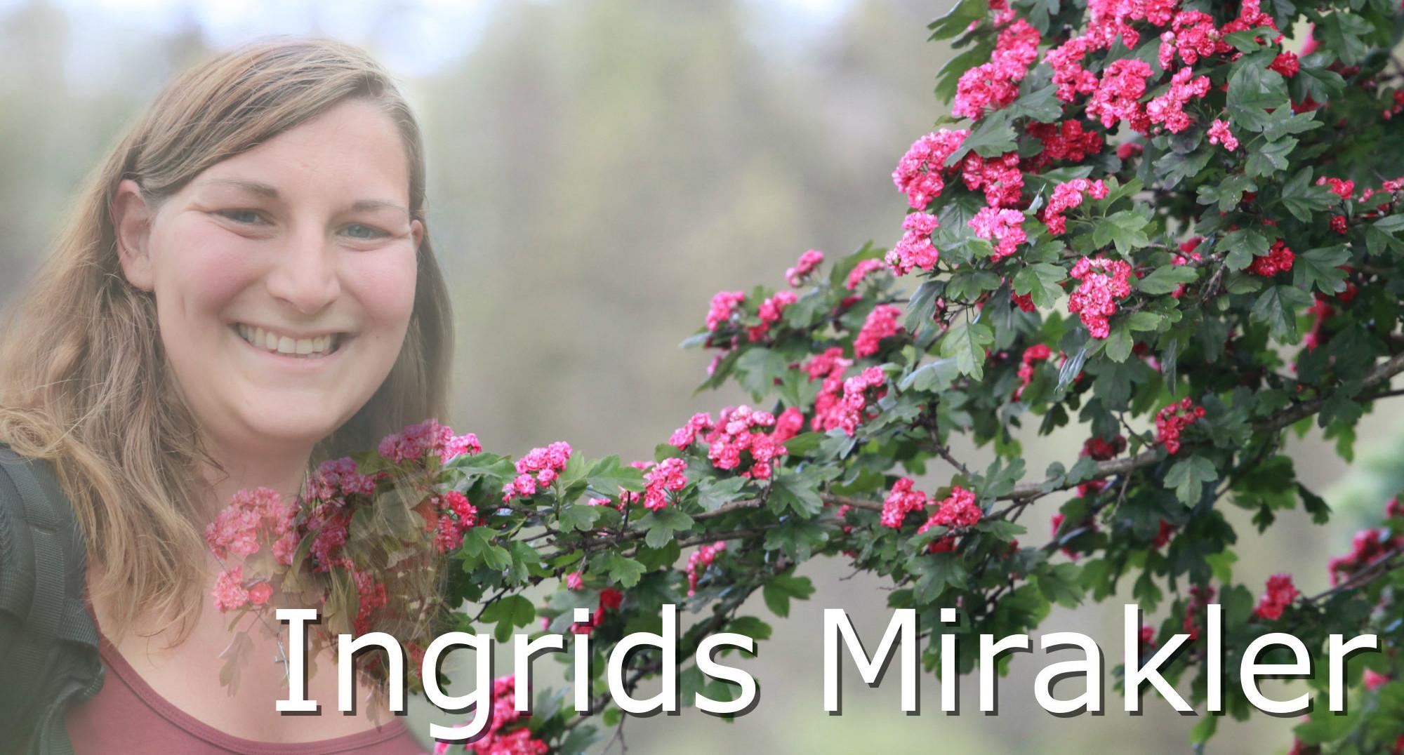 ingrids mirakler!