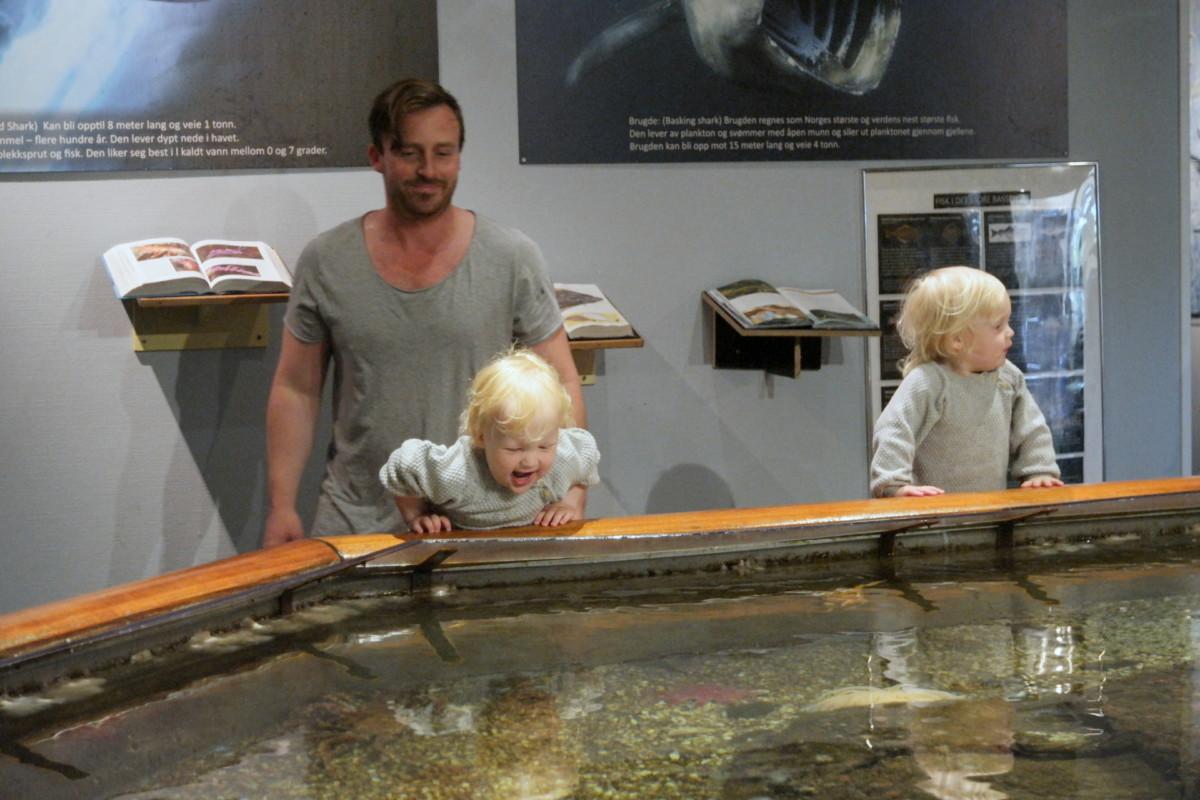 to toåringer som står lent over det første bassenget med store fisk