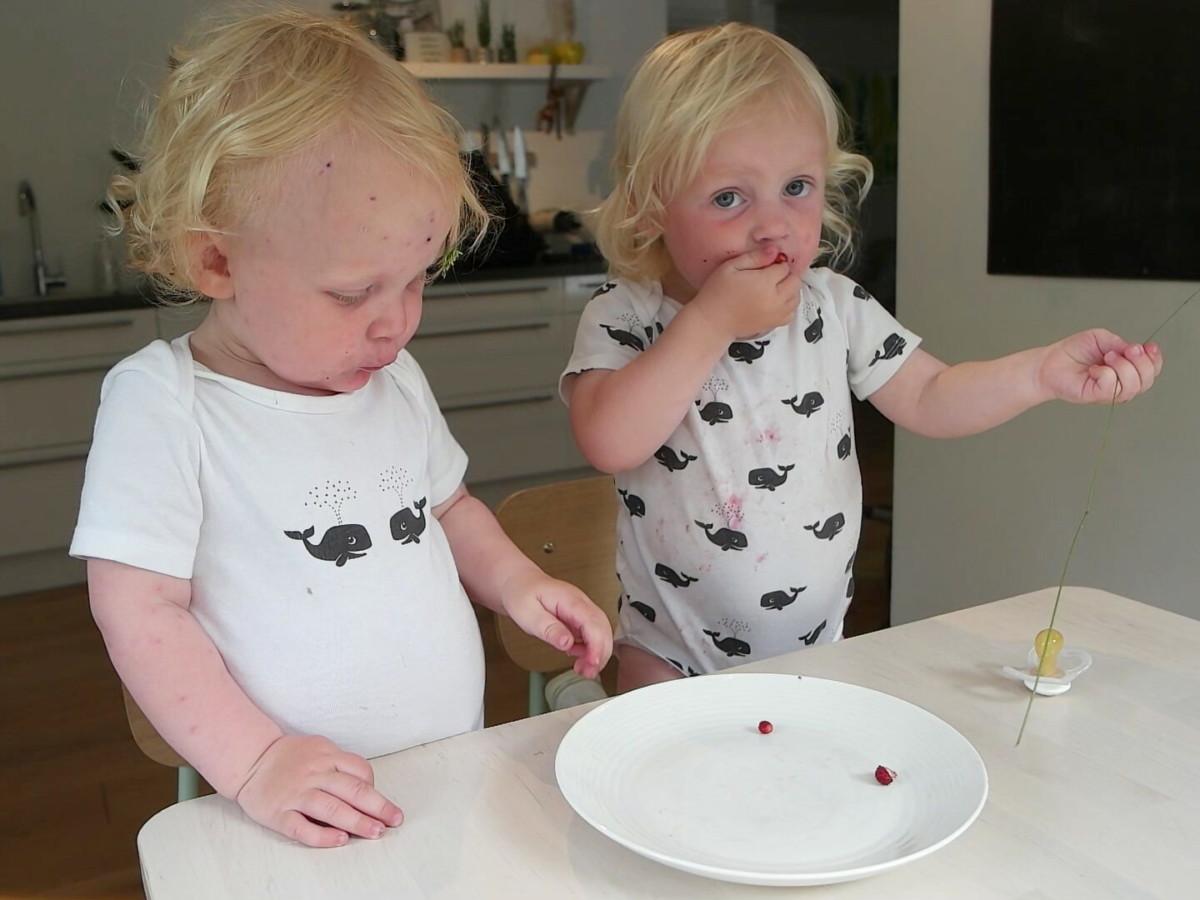Tvillinger på to år spiser markjordbær