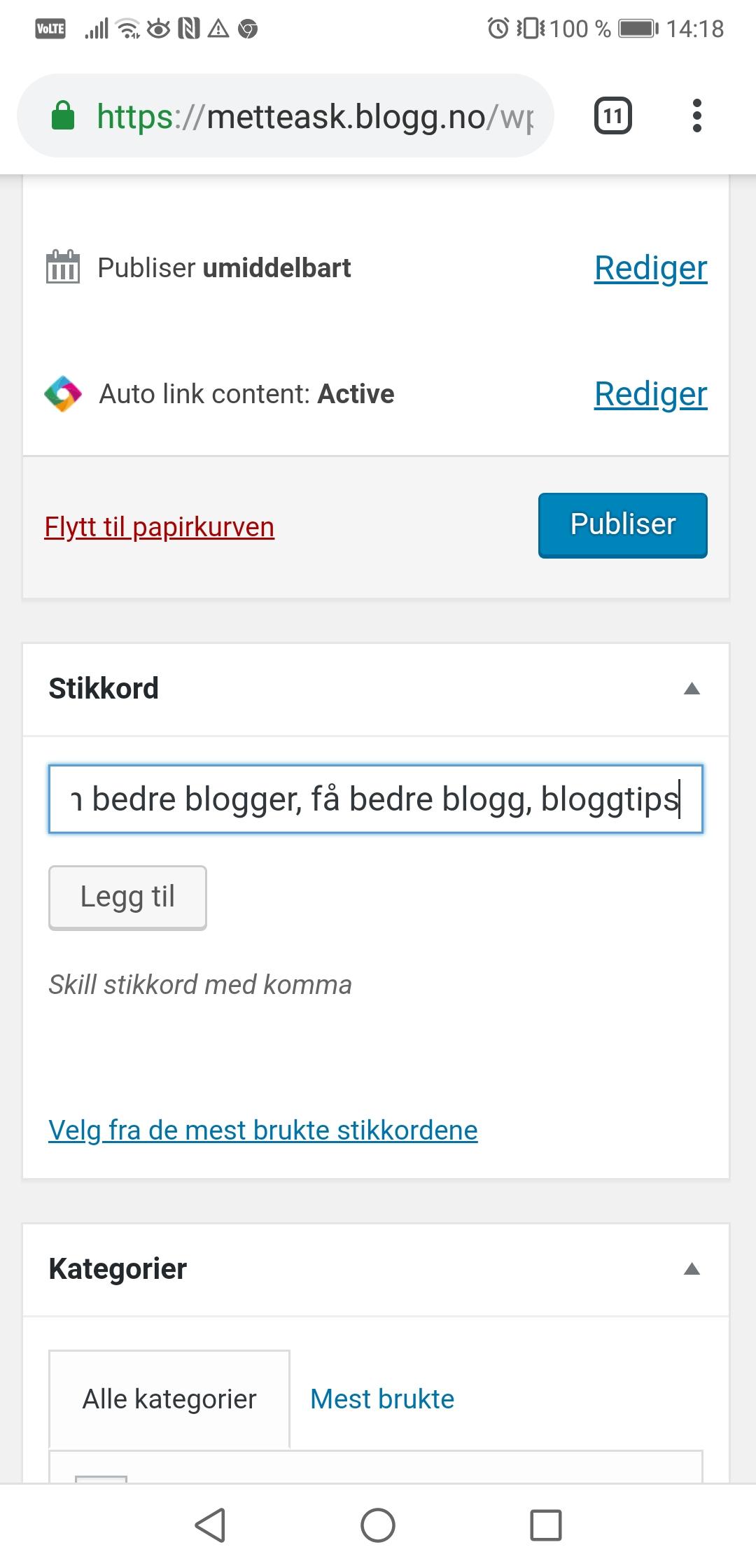 Blogg bedre