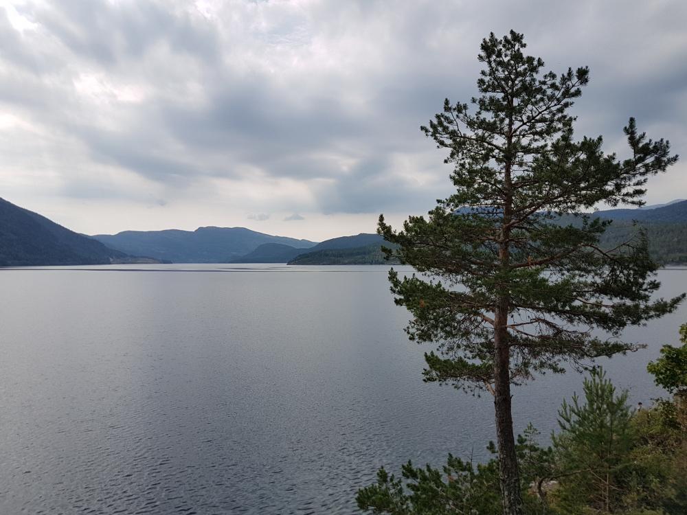 Fine dager i Larvik
