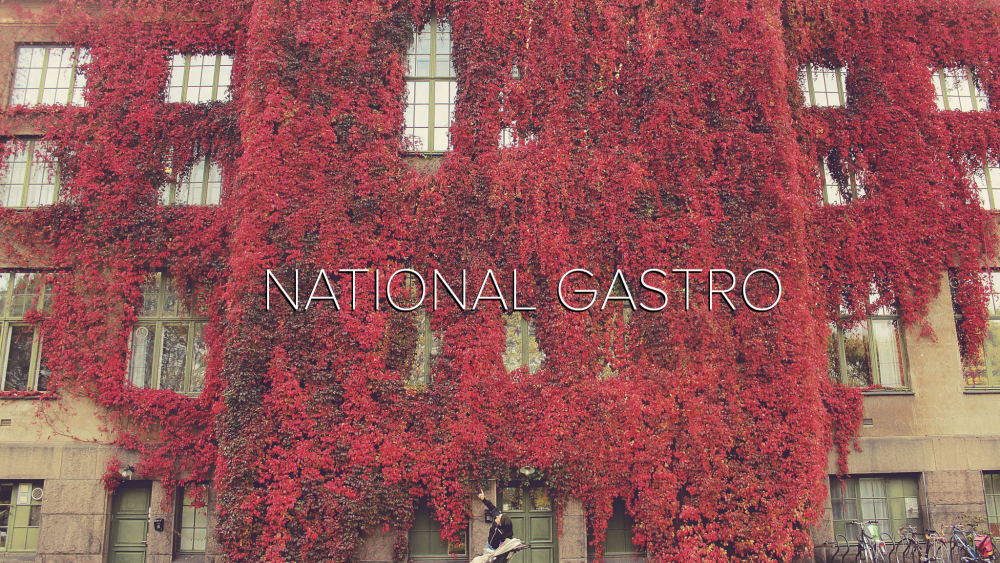 youtube national gastro nasjonalgastro