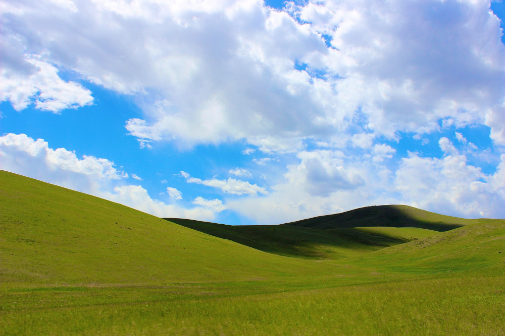 Mongolia XP background Bliss landscape landskap steppene steppes nasjonalgastro national gastro