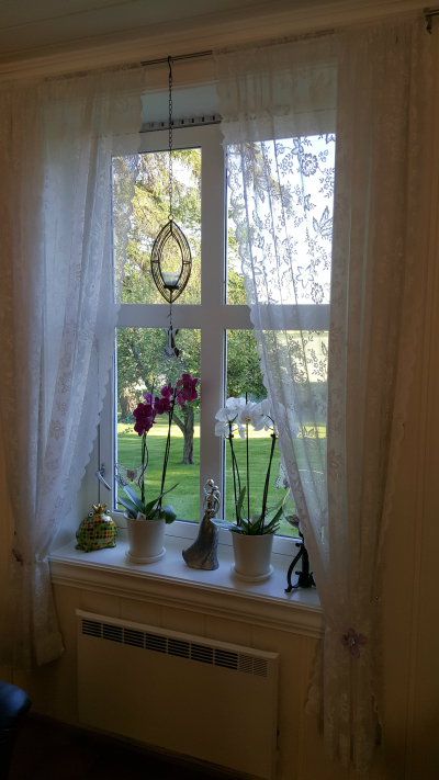 Et panel Window Treatment Designer , Blomsternål i krystall