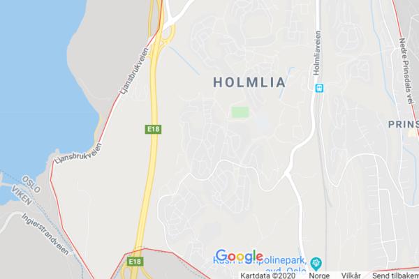 21-åringen anker ikke tingrettsdommen på ett års fengsel for vold mot en 16-åring ved Holmlia skole i Oslo