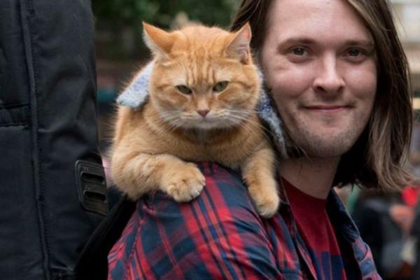 Gatekatten Bob, som inspirerte den populære boken og filmen «A Street Cat Named Bob», er død