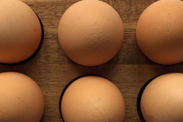 Mann i 20-årene kastet egg på politiet – nå er han dømt!