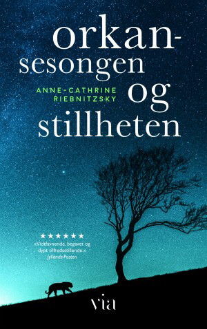 En vakker roman om tro, kjærlighet, sorg, drap og tilgivelse!