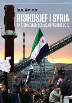 En kunnskapsrike og sterk bok om å jobbe mellom regime, opprørere og IS!
