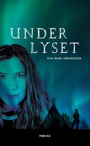 Spennende kriminalroman lagt til Nord Norge!