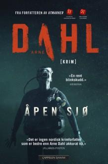 """Anmeldelse av Arne Dahls bok """"Åpen sjø"""":"""
