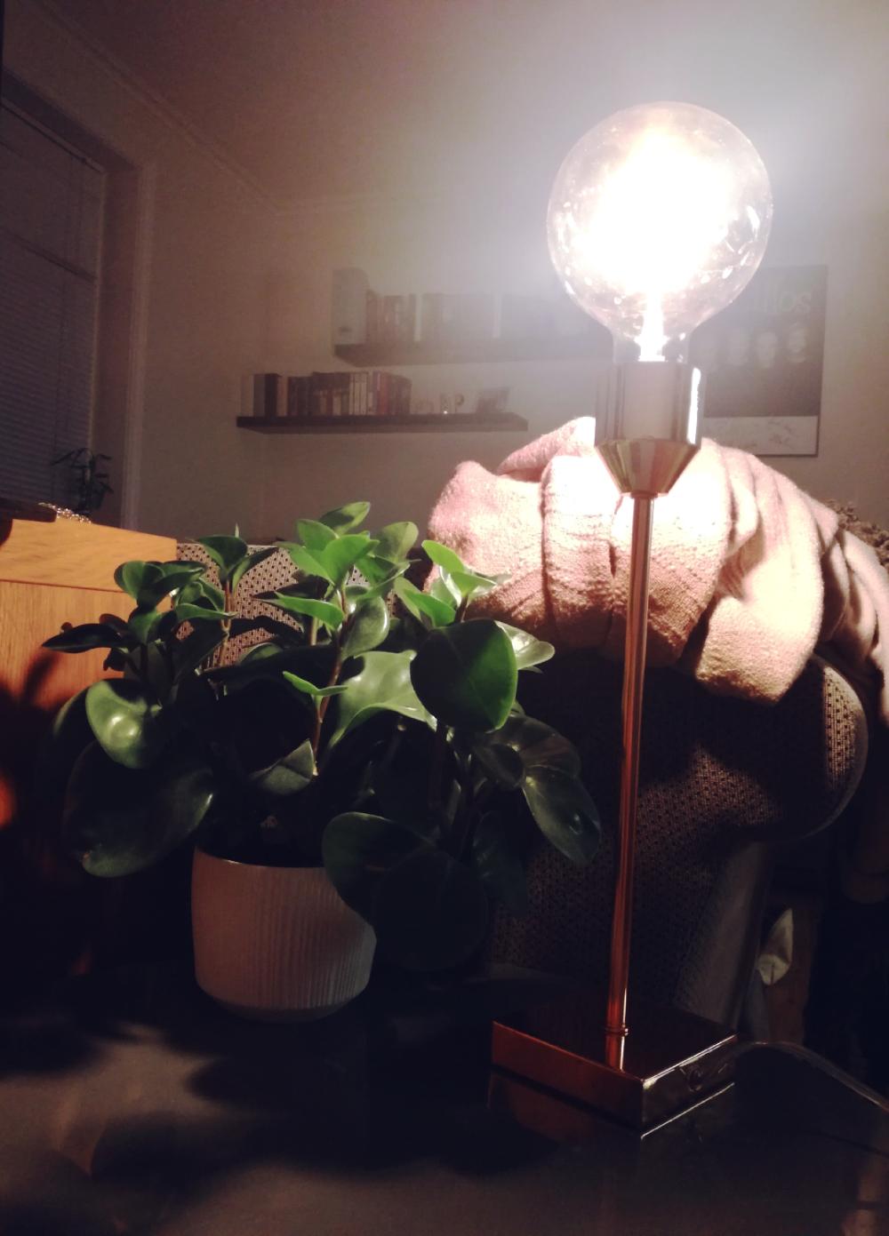 House detail: Kobberlampe