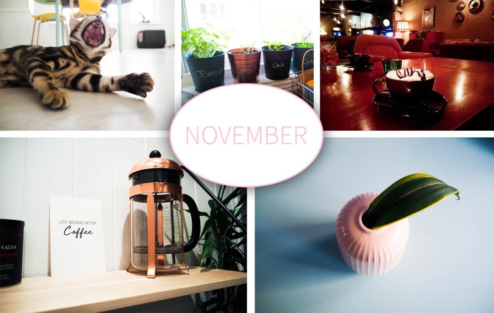 10 ting jeg vil gjøre i november