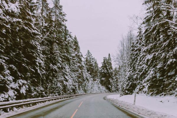 Ting jeg elsker med vinteren