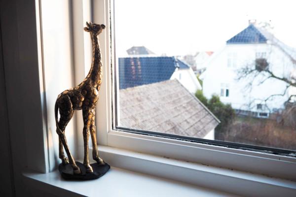 Giraffe in my livingroom