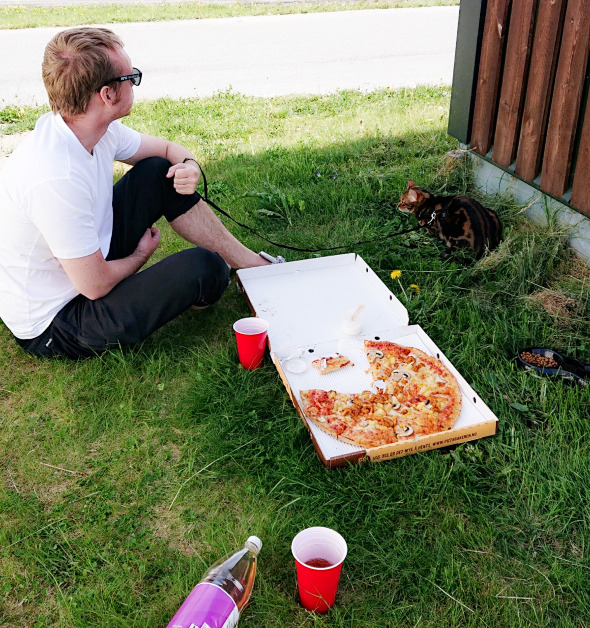 Pizzabakerpicnic