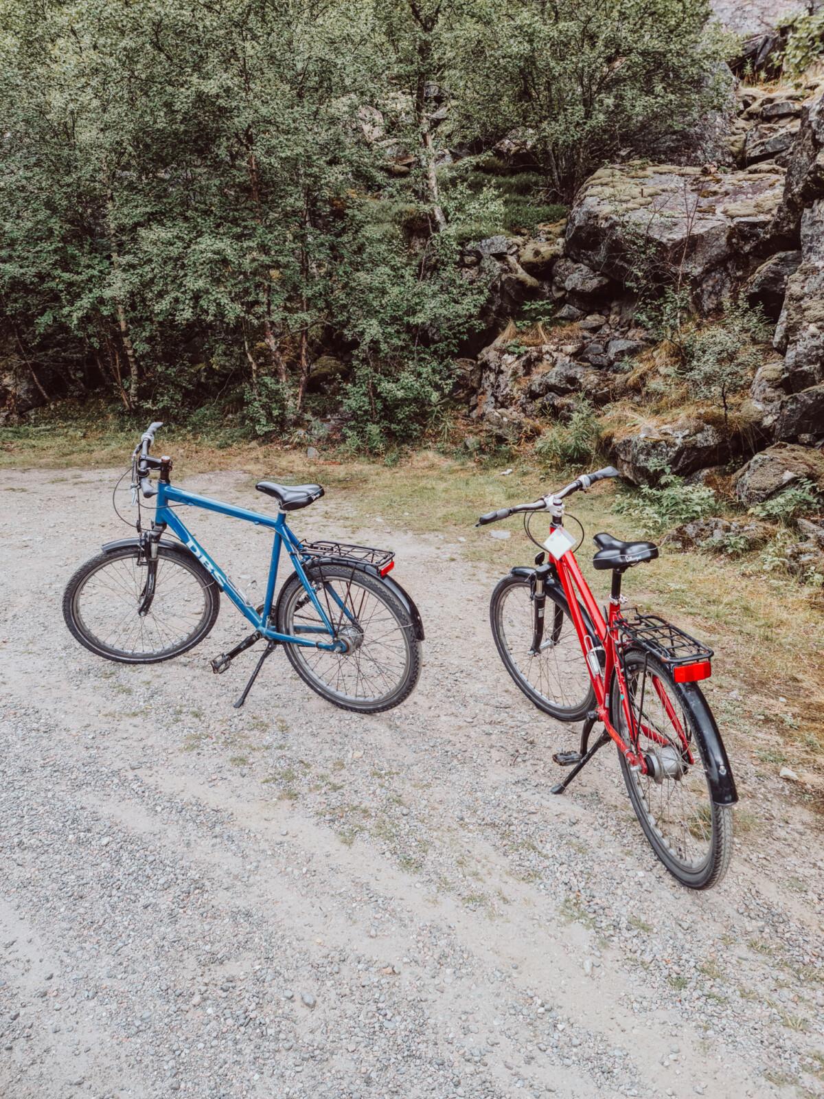 Sykkeltur ned Rallarvegen i Flåm