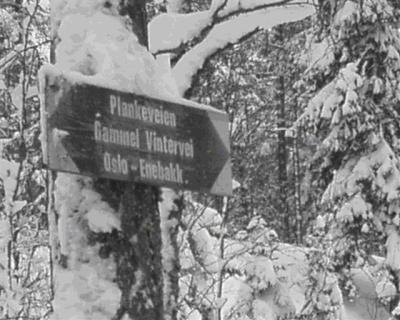 Østmarka; to turer på ski…