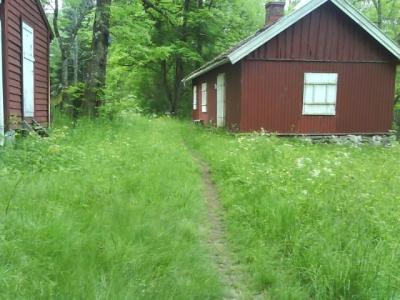 Østmarka; Dølerud – Tømmerås – Sandbakken…