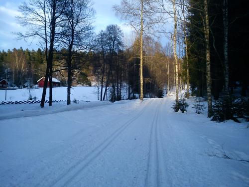 21 – 28 februar 2011 Med joggesko og ski