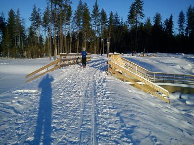 2 januar 2011 Romeriksåsen skitur fra Tærud