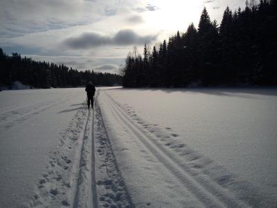 Østmarka; Haraløkka – Skålsjøen – Geitsjøen – Setertjern….skitur