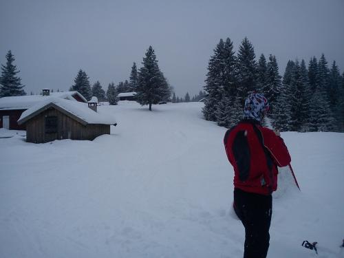 10 februar 2011 Skitur fra Sollihøgda