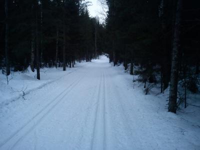 25 januar – 3 februar 2011 Tur og trening med joggesko – ski
