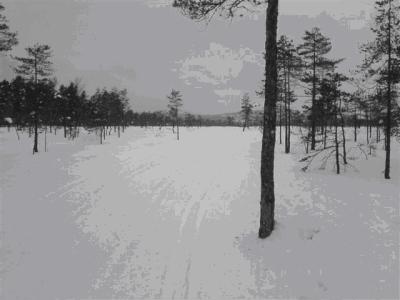 Skitur i Romeriksåsen; Tærud – Kokstadvangen…