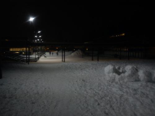 13 februar 2012 Landevei