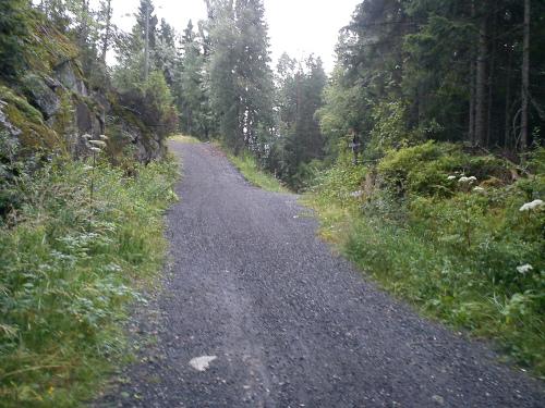13 august 2012 Østmarka – Gardfangåsen