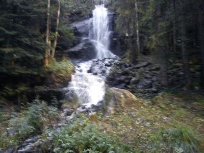 3 oktober 2011 Østmarka