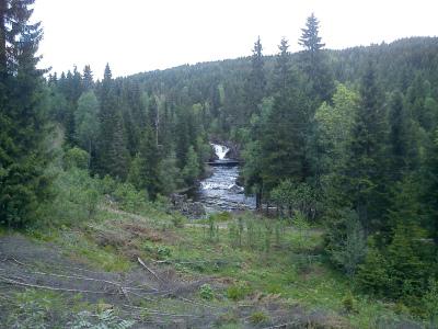 31 mai 2012 Nordmarka – skogsmaraton