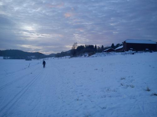 5 januar 2013 Østmarka – Losby