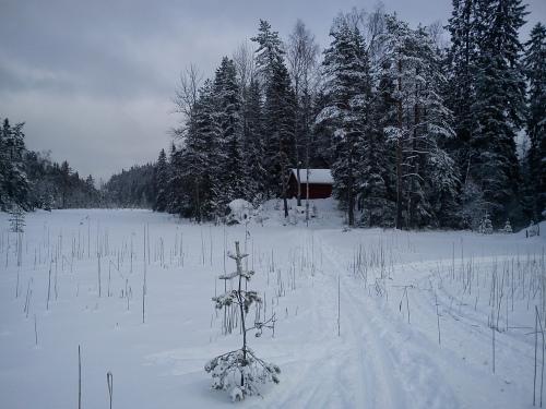 7 februar 2013 Skitur i Østmarka