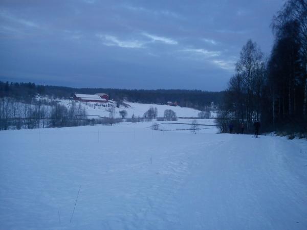 7 januar 2013 Østmarka