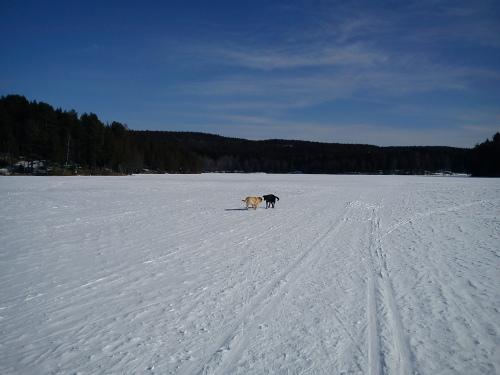 18 mars 2013 Skitur i Østmarka