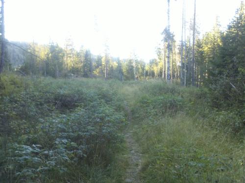 2 september 2013 Østmarka – Fri-Elvåga rundt inkl Igletjern