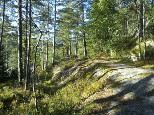 19 august 2013 Østmarka – Fri-Elvåga rundt